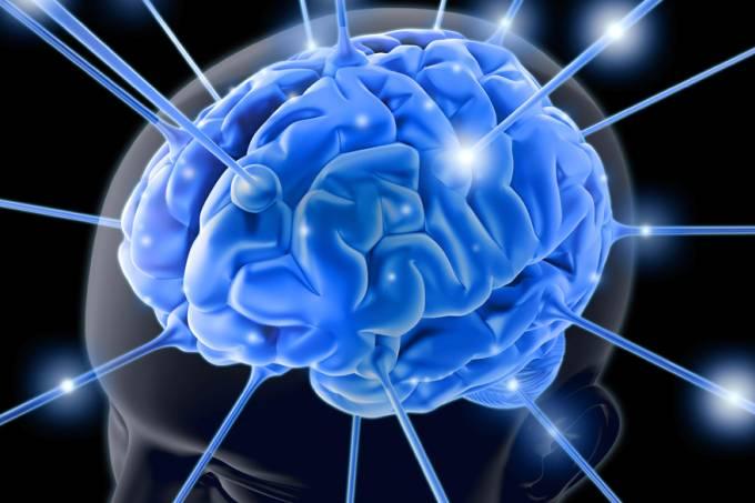 Cientistas conseguem reativar cérebros de animal após a morte
