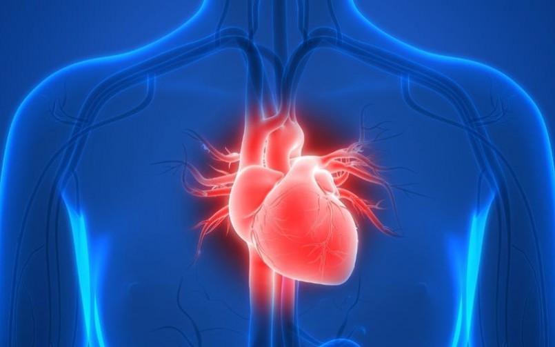 Diabetes tipo 2 aumenta risco de doenças cardíacas, indica pesquisa globaL